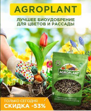удобрения для цветов купить в спб